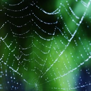 外壁や軒下など高いところの蜘蛛の巣掃除を楽にする方法