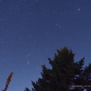 たまには星の話でも…。オリオン座とスバルとシリウスと