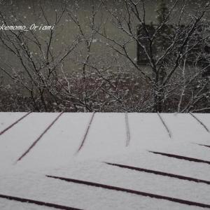 なごり雪…?