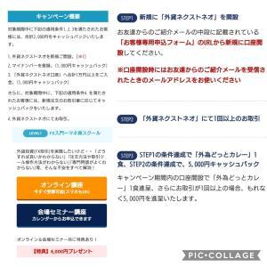 息子とFX紹介キャンペーン中!