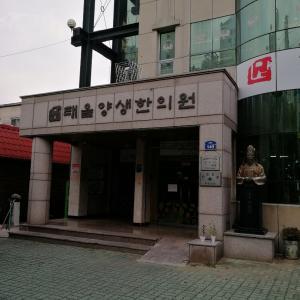 大邱観光医療FAMツアー②天然素材100%の石鹸作り