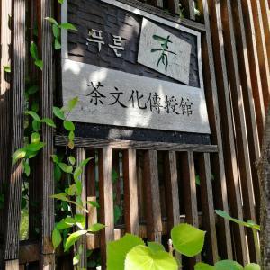 大邱医療観光FAMツアー⑫旅の終わりは韓国茶道体験