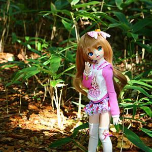 ドール三昧☆草軽旅行 Act.24 ある日~森の中~くまさんが~うひひ♪