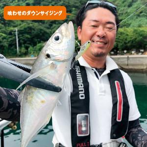 アジングもプラグで釣る時代が到来か?Σ੧(❛□❛✿)