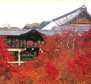 東福寺~方丈八相庭園