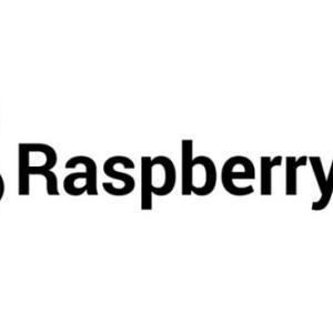 新たなる物欲との闘い… ラズベリーパイ!? 何だか美味しそうな名前の小型PC