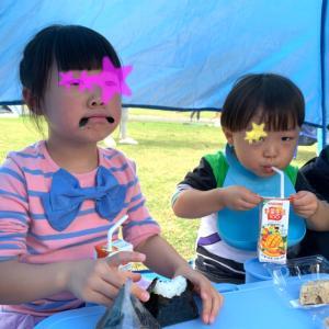 公園の緑化祭