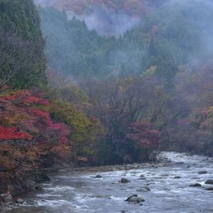 「川霧に烟る夏井川」 いわき 夏井川渓谷にて撮影!