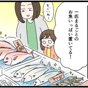 スーパーの鮮魚コーナーで売られているすっぽんを見て