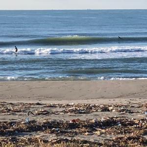 秋晴れ早朝サーフィン サイズダウン セット腹上オーバー