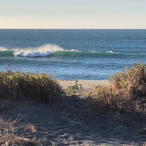 秋晴れ早朝サーフィン セット腹上