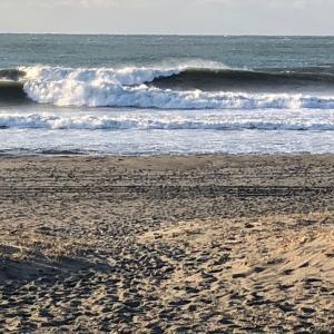 月曜日早朝サーフィン サイズアップ
