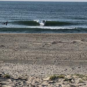春です 早朝サーフィン楽しむ