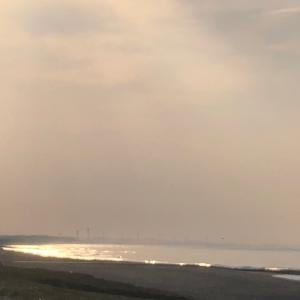木曜日 暖かい早朝の海