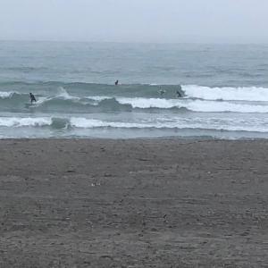 楽しい土曜日早朝サーフィン