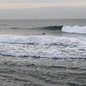 超スーパー朝一サーフィン チンさんVS jsurf