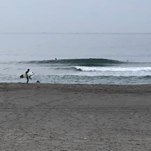 元気です、笑い有りの早朝サーフィン