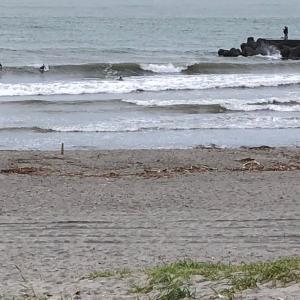 梅雨が開けなくても毎日早朝サーフィン満喫