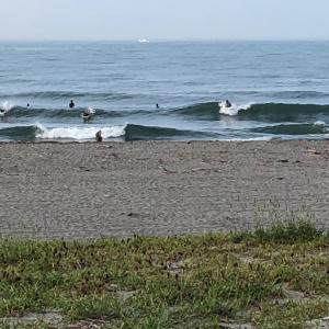 楽しめる小波 早朝サーフィン