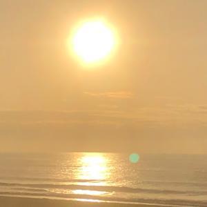 ポカポカ陽気早朝サーフィン
