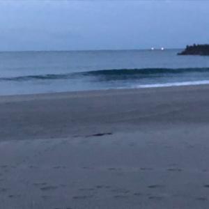 与えられた環境 毎日早起きサーフィン