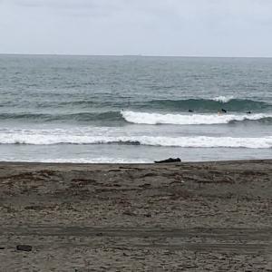 土曜日 梅雨空サーフィン楽しんでます