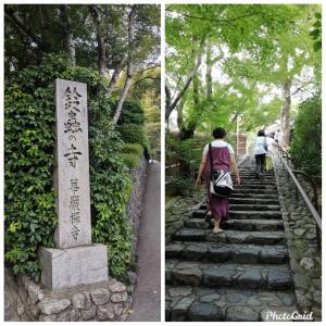 鈴虫寺からのモンキーパーク