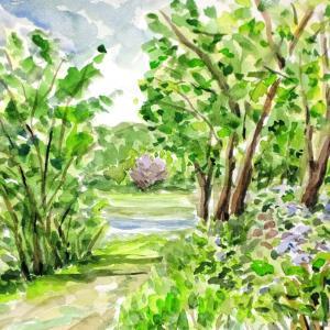 愛知池の散歩道