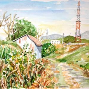天白川の散歩道3