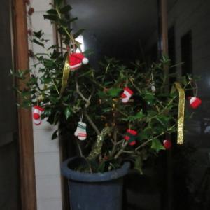 うちもクリスマスツリー