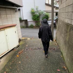 散歩して来ました