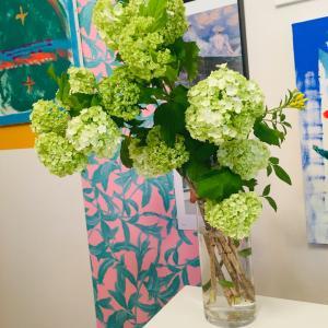今週のお花❤️グリーンアジサイ