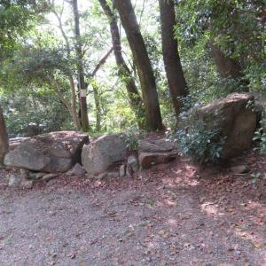 むき出しの安造田(あそだ)神社前古墳