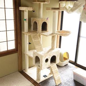 猫が2匹になったのでキャットタワーを購入しました。