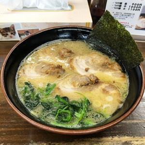 富山市【らあめん麺王】あっさりとした醤油とんこつスープ♪チャーシューラーメンを食す!