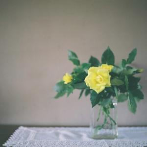 幸せの黄色