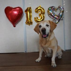 13歳の誕生日 おめでとう