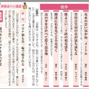 中日新聞・ローズ川柳、9月の川柳募集中!!