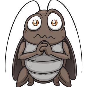【驚愕】フィリピン人にとって「ゴキブリ」というサウンドは非常にキュートに感じるらしい