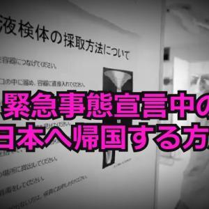 コロナ帰国奮闘記|2021年1月16日「セブー成田」入りを果たしたIさんの軌跡