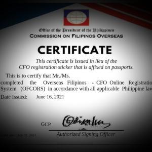 フィリピン脱出の儀式「CFO」インタビュー完了(20分)