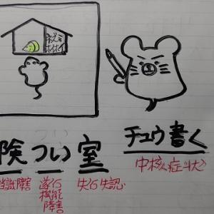 ケアマネ速レ(250/446P)