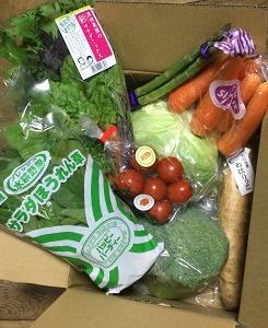 箱いっぱいの野菜が届きました!