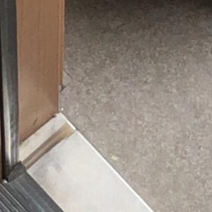 玄関ドアの調整