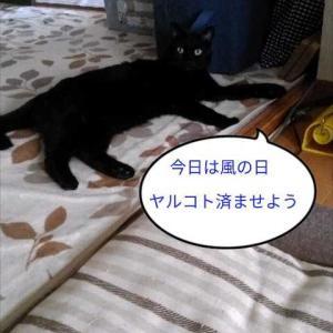 あっという間の3連休(>.<)
