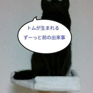 25年かぁぁぁ(>_<)
