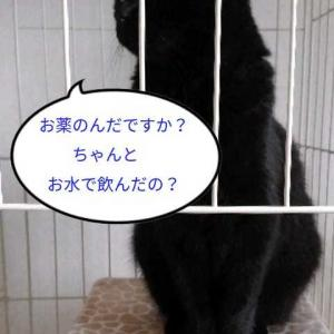 お休み日記<(_ _)>