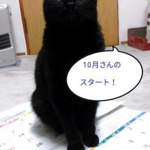 (ΦωΦp2020年10月さんq*´ω`*)