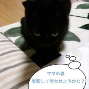 変顔(ΦωΦ)
