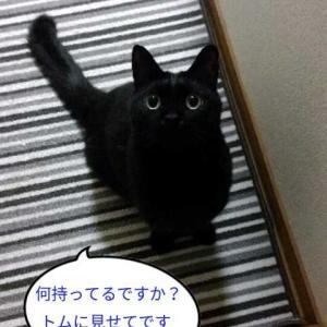扇風機さんの片付け(*´ω`*)